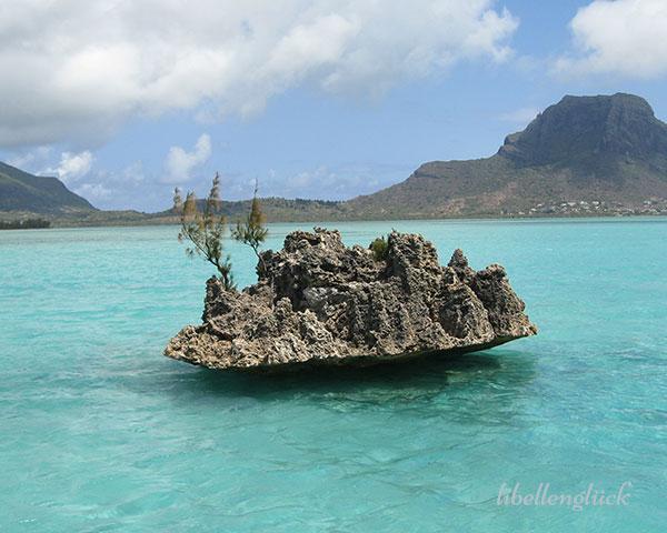 Meer auf Mauritius_1