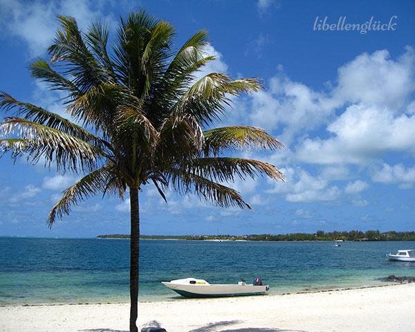 Meer auf Mauritius_3