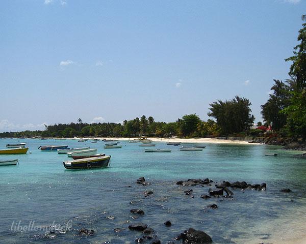 Meer und Felsen auf Mauritius_6