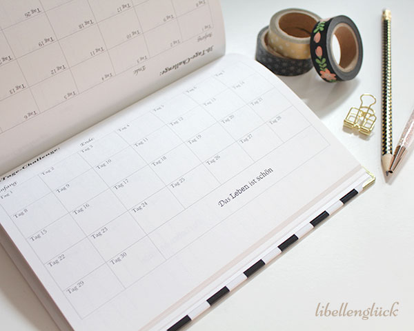 30-tage-challenge-my-lovely-planner